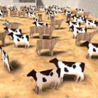 depressed cows